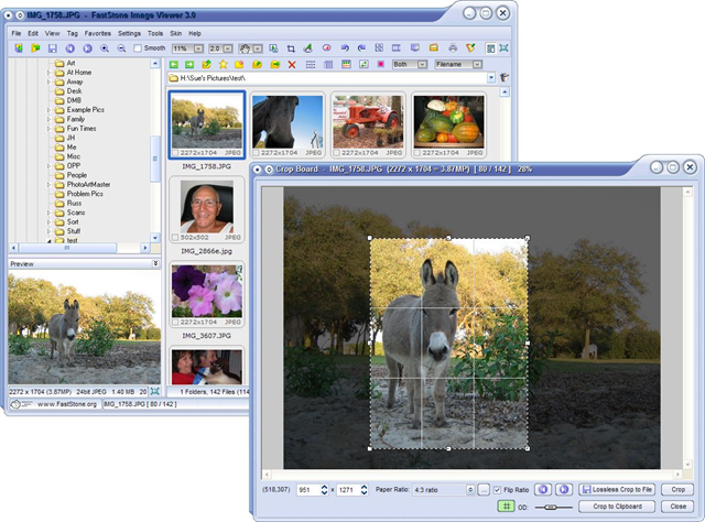 Free FastStone Image Viewer – Stands Up to XNView and Irfanview