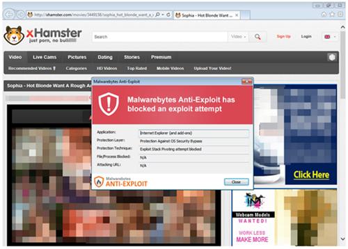 Amateur free msn passport sex site web
